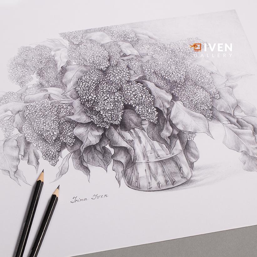 IVEN_Gallery_Irina_Iven_Flieder_Zeichnung