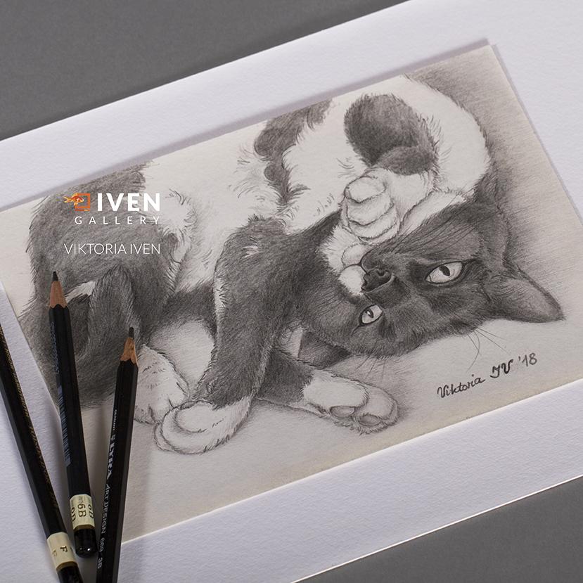 IVEN_Gallery_Luebeck_Viktoria_Iven_Spielende_Katze