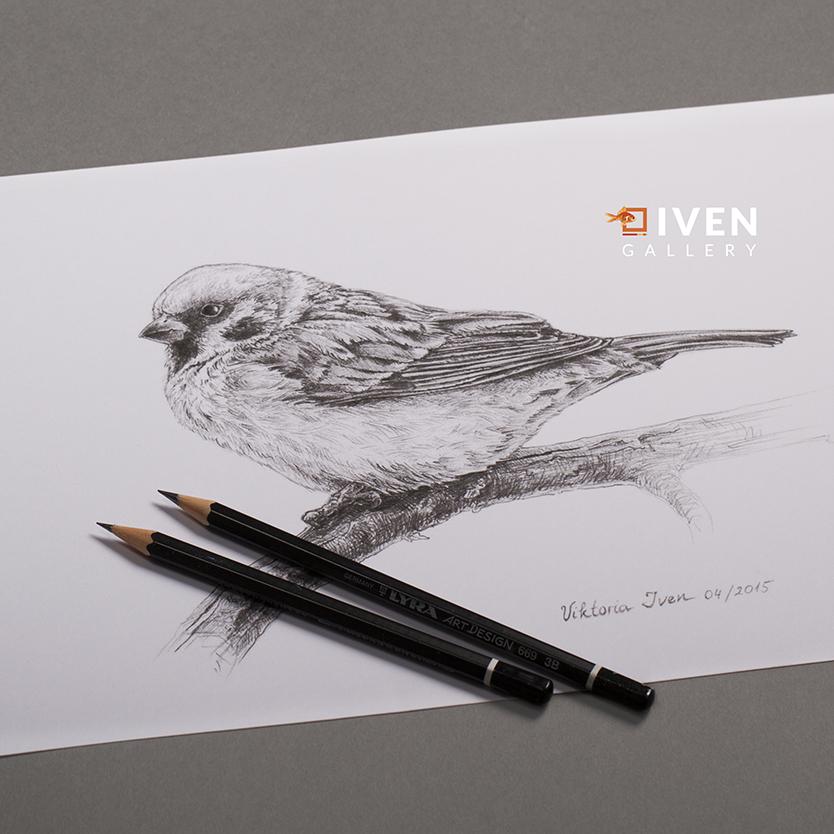 IVEN_Gallery_Viktoria_Iven_Spatz